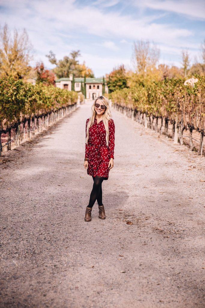 burgundy dress 9
