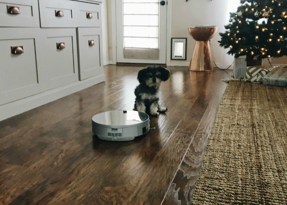 bObi by bObsweep: The Best Thing That Has Ever Happened to My Wood Floors